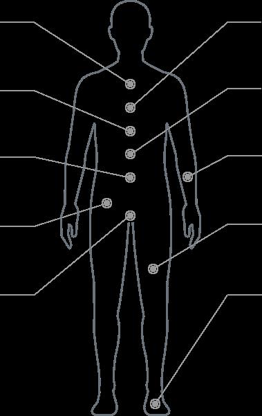 body-selector